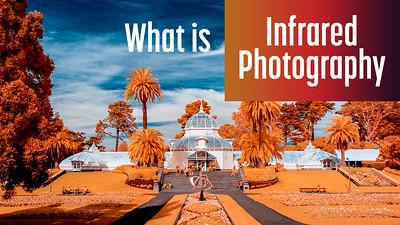 What is Infrared Photography? An intro for everyone