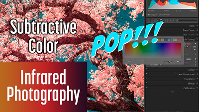 Secret to Colors that POP in Infrared Photography