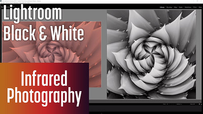 Editing Infrared to B&W with Lightroom