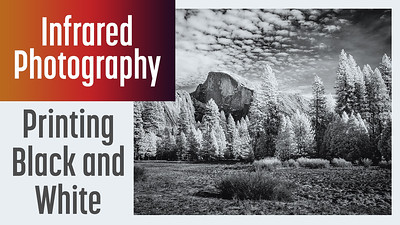 How to print black and white photos in Lightroom
