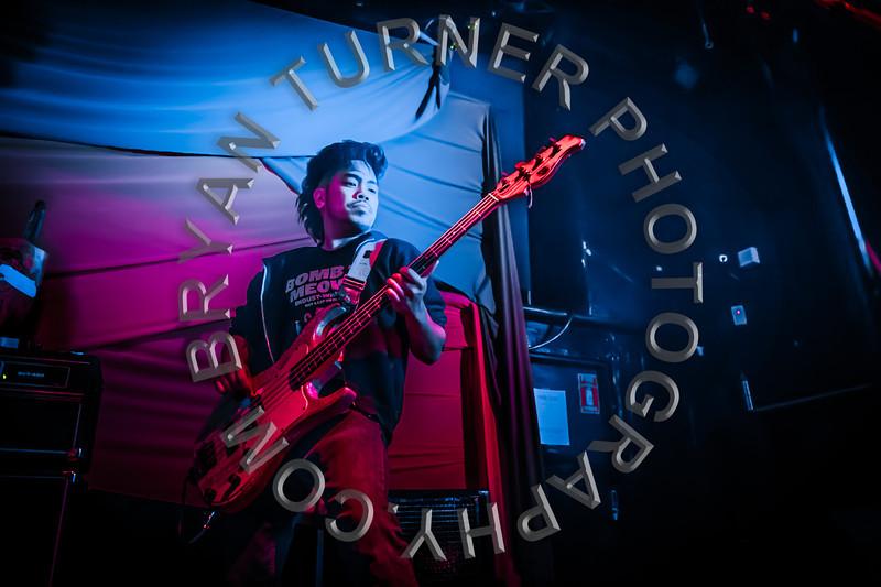 Turner-6445