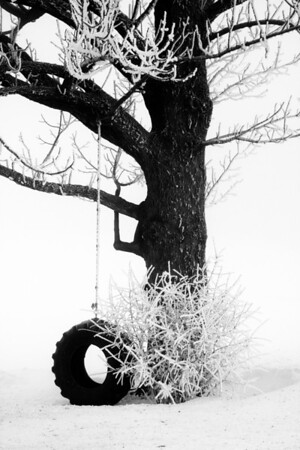 Too Cold To Swing_IMG_3856
