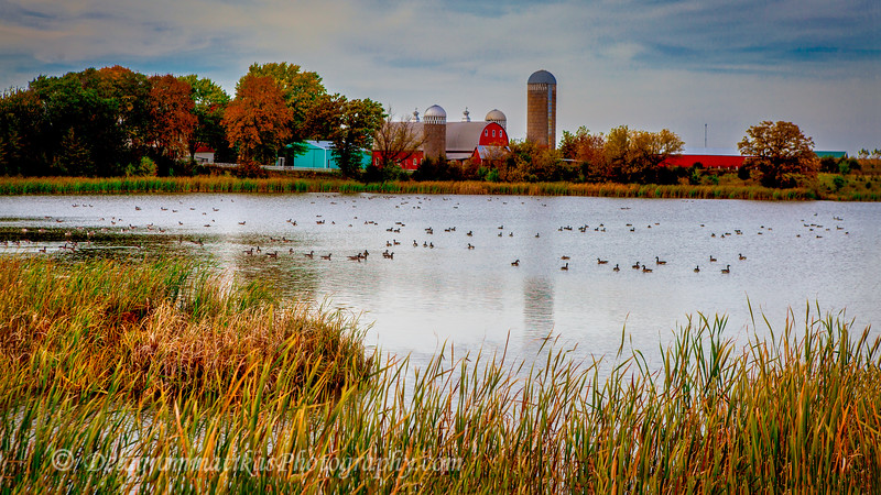 20151010_Minnesota_1253