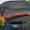 20110221_Whale House Corona Del Mar_0056