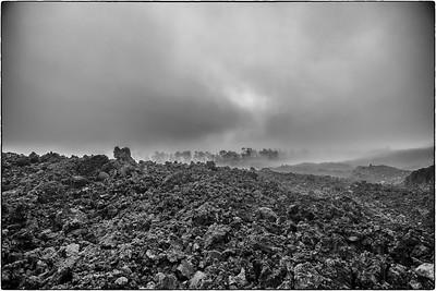 Lavafeld mit Bäumen im Nebel