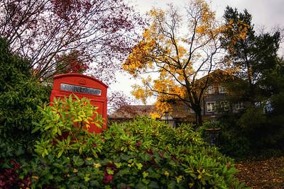In autumn colours
