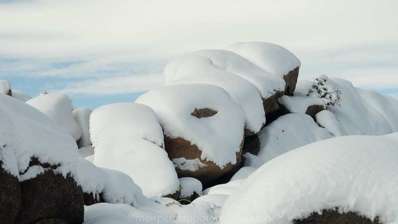 JOSHUA TREE SNOW_-31.jpg