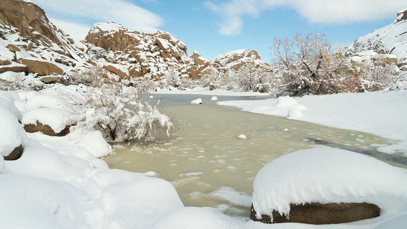JOSHUA TREE SNOW_-29.jpg
