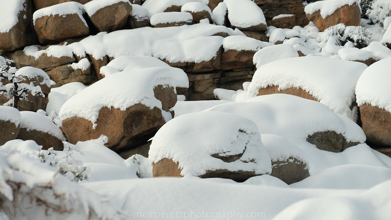 JOSHUA TREE SNOW_-30.jpg