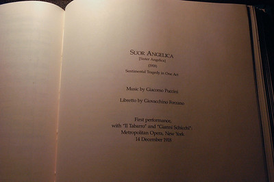 Suor Angelica 2010 (14 of 106)