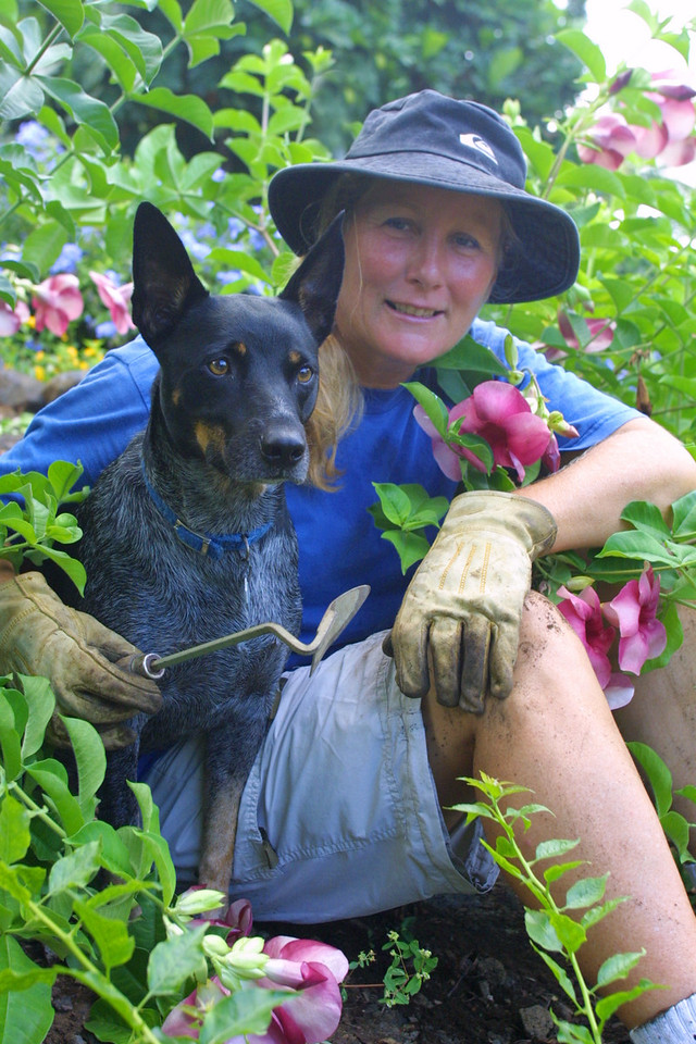 Alison Scott with her Dog Razer tending the grounds on the Kona campus. Sept 2002