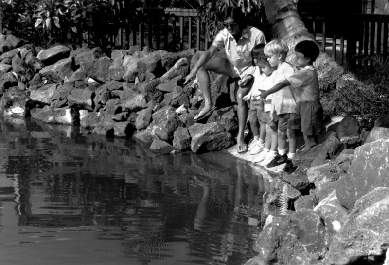 Bernie Tsao showing children the aqua culture fish pond-Kona pre-school