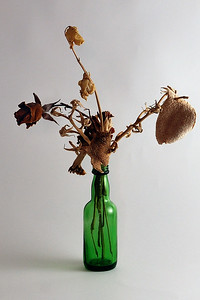 Dried flowers and orange peel in a small green bottle