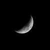 Same moon, next day and in a little bit better focus.
