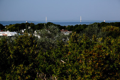 Bridge view from East Bluff