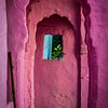 An Archway of Pink