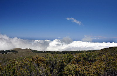 Watching the clouds roll in along the lower stretch of Haleakala Summit Road, south Maui.