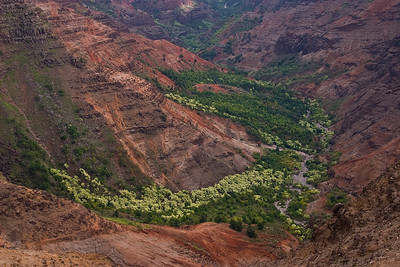 The confluence of Po'o mau Stream and Waiahulu Stream, both of which flow into the Wailea River (just out of the picture to the bottom right). Near the head (northern terminus) of Waimea Canyon, west kaua'i.
