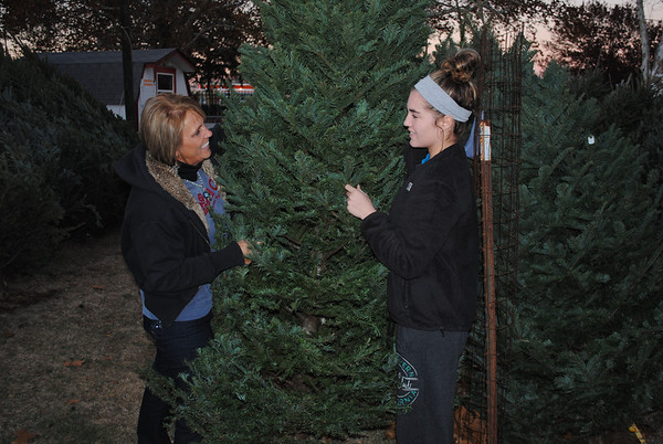 The annual Christmas tree sale is underway for the Duncan Kiwanis Club. Kiwanis Member Dina Atnip and Duncan High School Key Club Member Molly Pickard look at the assortment of trees on the lot.<br /> <br /> Photographer's Name: Clayton  Pickard<br /> Photographer's City and State: Duncan, OK