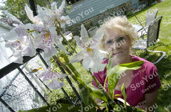 -Messenger photo by Hans Madsen<br /> <br /> Karen Johnson looks over a Oncidium orchid in the orchid section of her large backyard garden. Her home is the first stop on this year's Fort Dodge Garden Club annual Garden Walk.