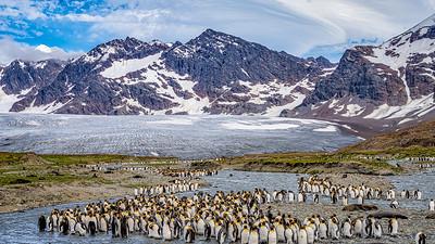 Antartica - Jan 2020