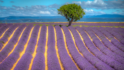 Provence, France - July 2018