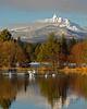BBR-view-swans-KateThomasKeown-C_DSC4005