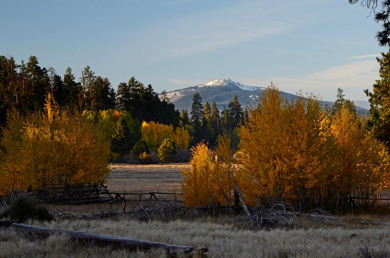 Glaze Meadow Proper Fence Fall_DSC7831