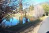 11-5 beaver pond reflections