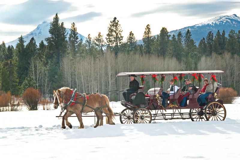 BBR-Holiday-Carriage-Rides-KateThomasKeown_DSC7853cmyk