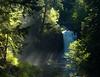 Tamolitch  Falls_DSC8839-11x14 in