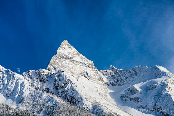 SSP_ROGERSPASS_20170107_0028-Edit