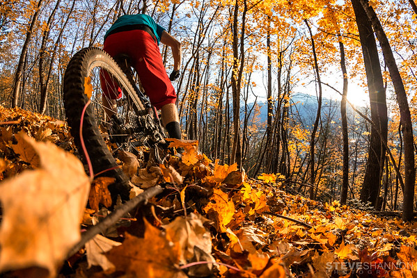 SSP_REVELSTOKEMTNBIKING_20161023_0027-Edit