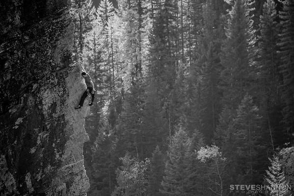 SteveShannonPhoto_20141009_7018