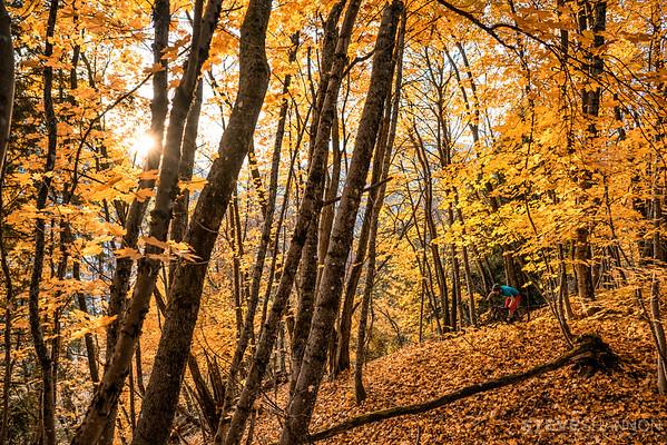 Luke Stevens enjoying the fall colours in Revelstoke, BC.