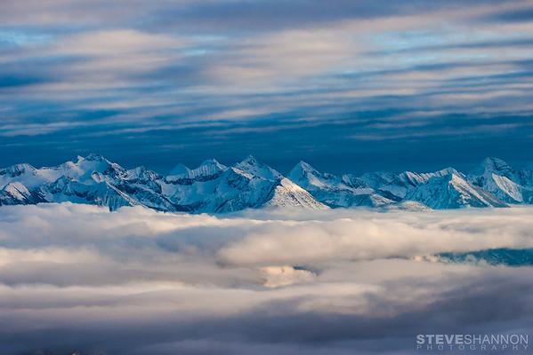 SteveShannonPhoto_20121231_3162