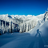 A backcountry skier casts a shadow on powder snow while ski touring at Rogers Pass near Revelstoke, British Columbia.