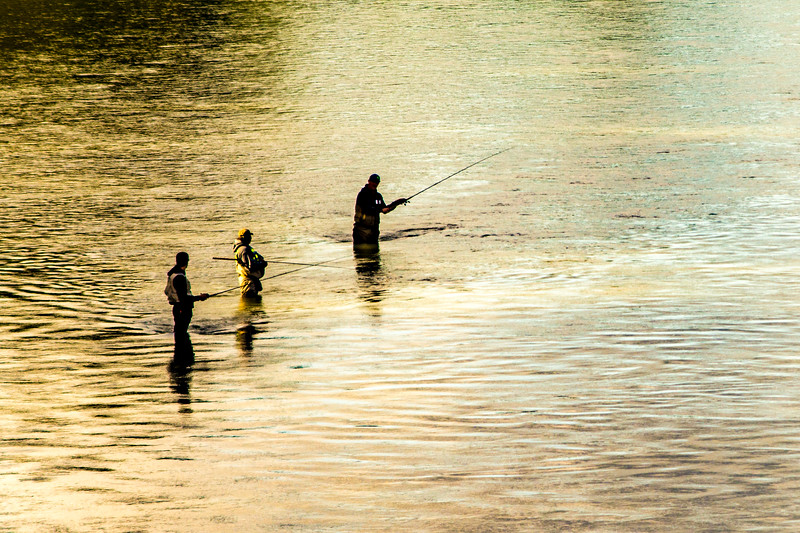 Fishin the Puyallup