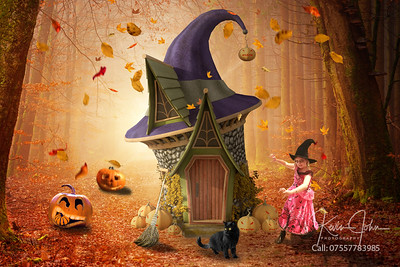 Witch and House