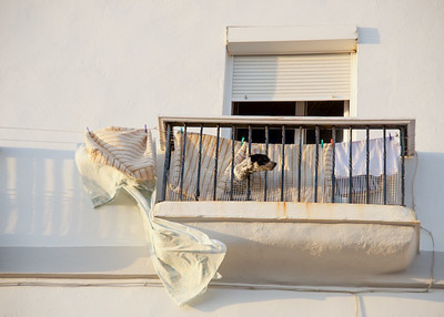 dog on balcony, Cadiz
