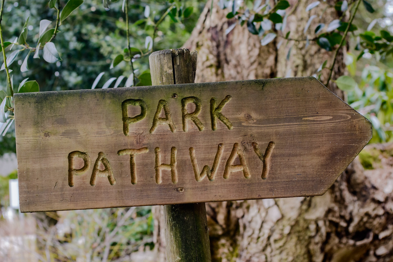 the park pathway