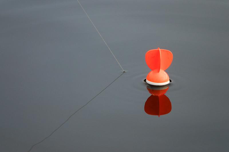 Float fishing in the margins