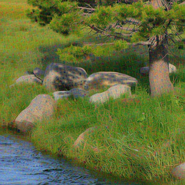 Squaw Creek Vista - Upscaled Detail