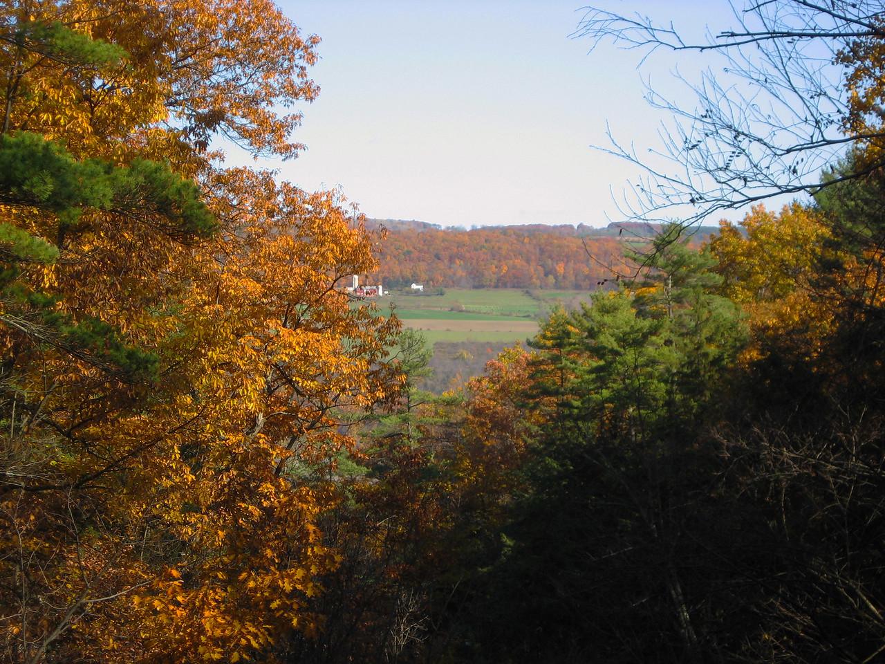 Autumnal Overlook