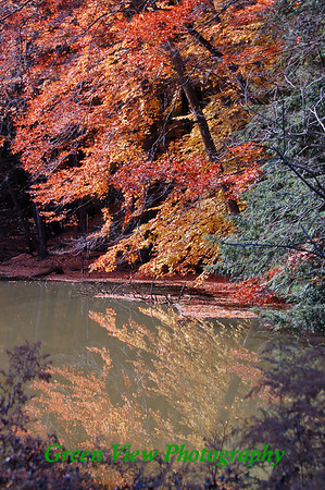Autumn Reflection on Durand Lake