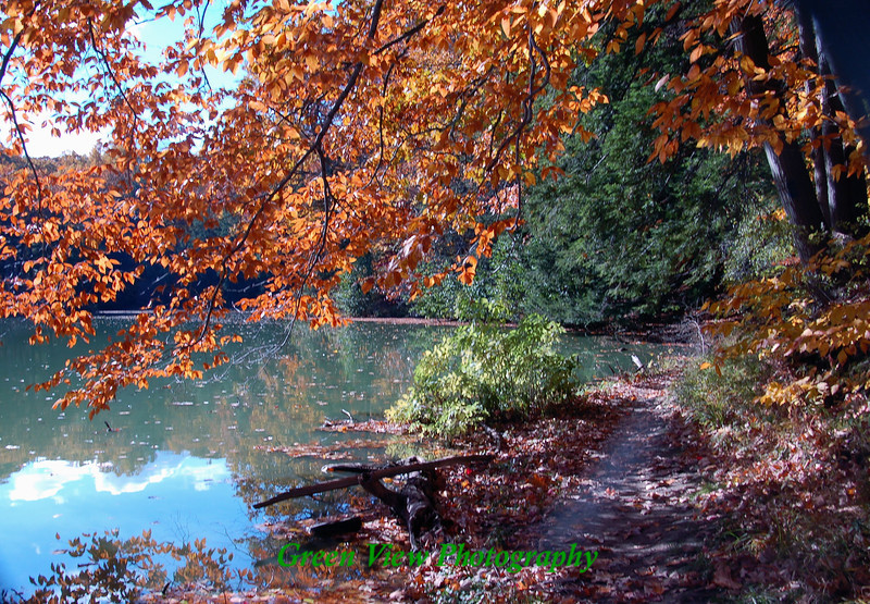 Autumn Path along Durand Lake