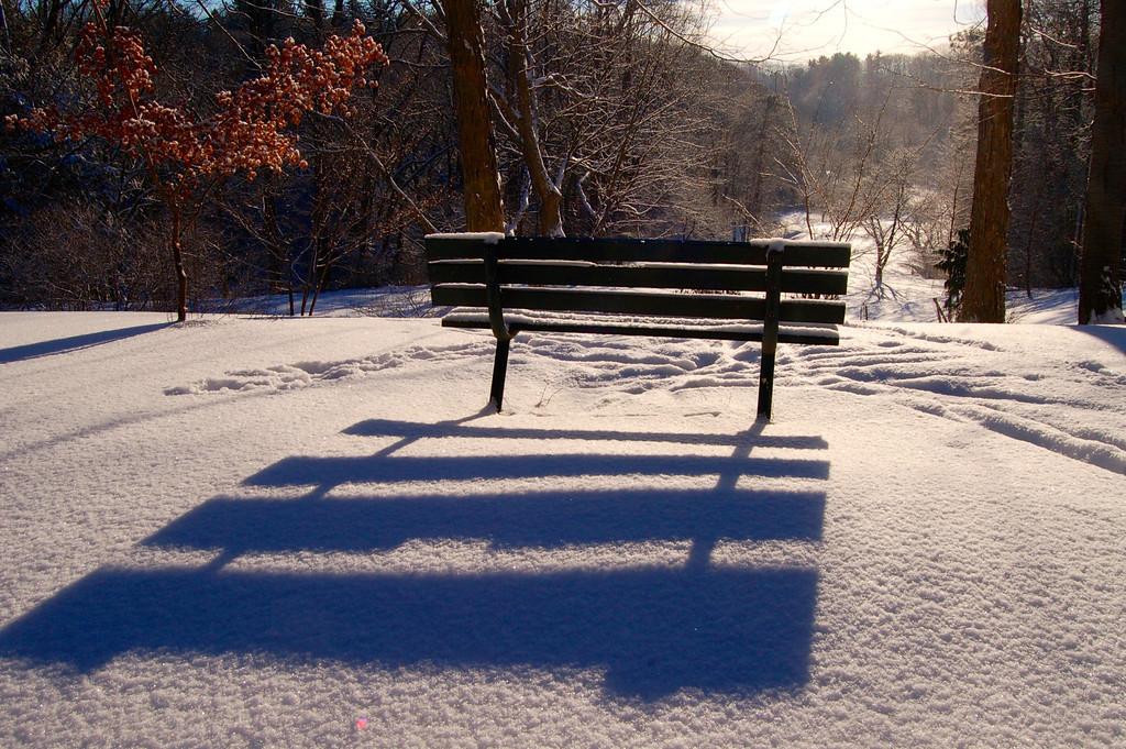 Durand Park Bench