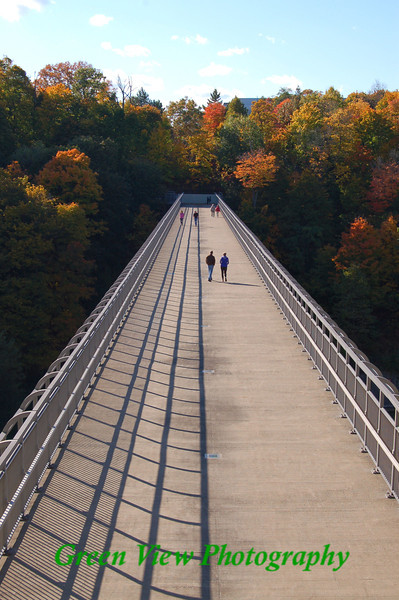 Genesee River Foot Bridge