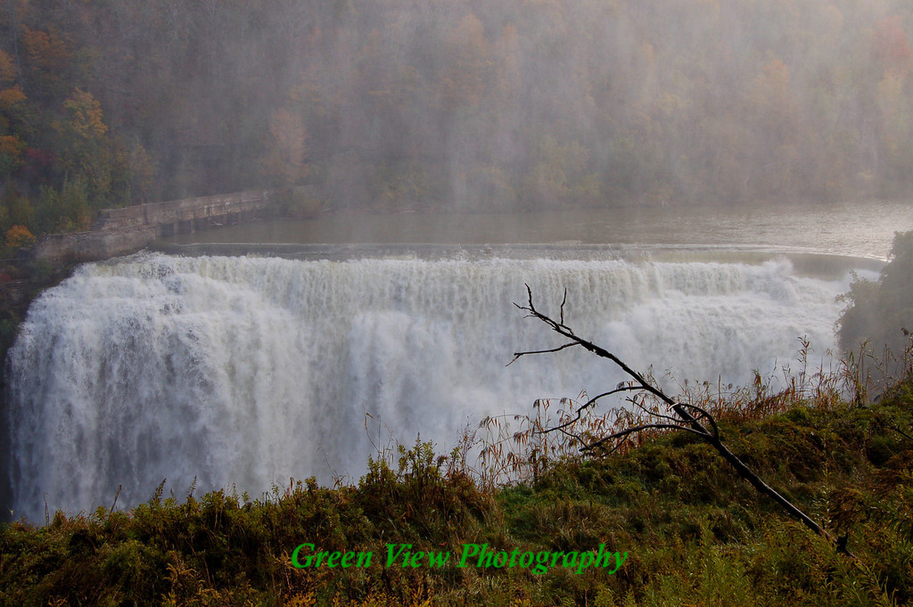 Lower Falls, Genesee River