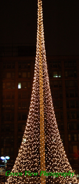 Liberty Pole